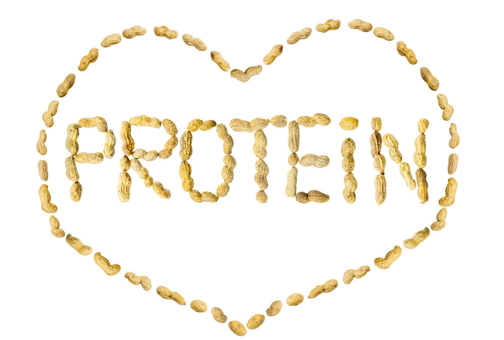 The Ultimate Guide To Protein: How Much Do You Need Each Day?